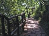 太行山大峡谷有度假村吗,空气好吗欢迎咨询