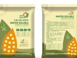 供应平衡型水溶肥价格