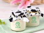 山东潍坊青岛烟台巴氏鲜奶吧有哪些?