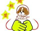 金山亭林宠物火化宠物殡葬上海市宠物火化?#34892;?#21160;物火化
