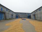 出租储粮仓库3栋,粮面5-6米 配置齐全 3000平米