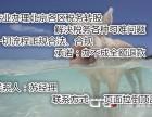 设立北京特许行业经营许可办理需要哪些条件