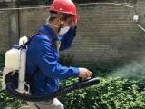 杭州江干區餐廳飯店滅鼠白蟻防治滅蟑螂除四害