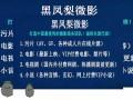 做电影小说微商贸易部手机轻松搞定情加xqiao131