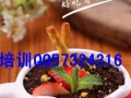 辽宁锦州抚顺什么地方培训汉堡,炸鸡,奶茶披萨培训