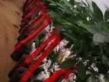 合肥蜀山经开区明珠广场莲花路鲜花开业开张花篮花束绿植盆景配送