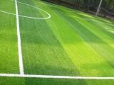 足球場草坪南寧人造草坪綠色環保耐用