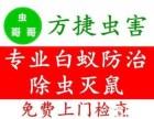 武汉硚口除虫消毒公司专业灭老鼠,杀蟑螂杀白蚁灭跳蚤臭虫