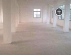出租一栋2层全新楼房