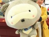 厂家直销 正版小浣熊毛绒玩具 公仔 玩具熊批发 礼物 一件代发