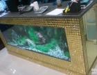 广州岗顶哪里可以清洗鱼缸,广州鱼缸护理换水清洗,鱼病专业治疗