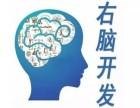 智慧腦教育加盟費多少錢