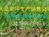 东阳专业人造草坪足球场施工队伍