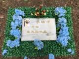 北京寵物殯葬 小狗安樂死 寵物墓地 狗狗安樂死