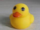 J947 惨叫小黄鸭公仔 搪胶小黄鸭 洗澡戏水小黄鸭  亲子玩具