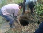 安定镇附近抽粪+疏通污水井服务