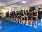 济南金龙散打搏击俱乐部防身专业培训
