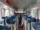 大巴中巴包车 班车 企事业单位旅游机场接送带司机