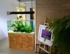 未来鱼缸设计制作与改造维护