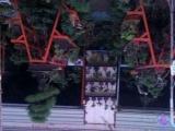 盆景奇石,花盆老盆