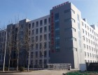 天津自贸区办公大楼出租