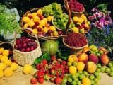 北京机场水果进口需要哪些手续