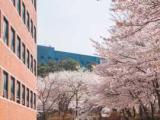 2019年南首尔大学博士特别课程招生简章 较新版