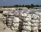 大連牡蠣扇貝涂料級生態貝殼粉批發