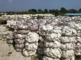 大连牡蛎扇贝涂料级生态贝壳粉批发