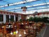 鲁源纹络型玻璃连栋生态餐厅温室建设厂家