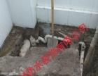 专业防水补漏、楼顶、外墙、厨房、卫生间、价格优惠
