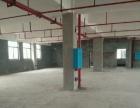 开福周边 青竹湖中青路佳海工业园 厂房 2400平米