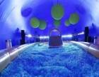 上海鸣响科技蓝鲸乐园 鲸鱼岛租售