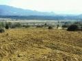 丽江玉龙雪山脚下玉湖村黄坡 土地 66000平米