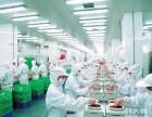 专业食品厂装修公司/专业无尘净化厂房装修施工队