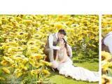 麻城1997纽约婚纱摄影八月狂欢 钻戒免费拿回家