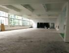 厂房仓库 精装修出租 园区整洁 停车位充足