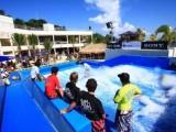 大理冲浪出租厂家水上冲浪冲浪设备
