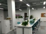 二手办公家具低价出售老板桌会议桌员工桌致电咨询