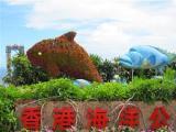 w深圳出发香港3天2晚海洋公园赠送夜游维多利亚港欢乐游