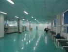 东湖高新光谷电子厂 1800平米 有宿舍 食堂配套 可分割
