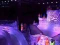 冰雕展明星蜡像展蜂巢迷宫展雨屋展机械大象展设备租赁