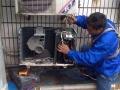 专业空调移机维修加氟技术好