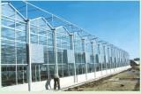 建温室大棚要多少钱 蔬菜大棚工程