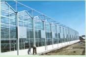 温室大棚建造找哪家 花卉温室