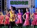 东营外籍乐队表演,杂技力量组合,开场鼓舞,舞狮助兴