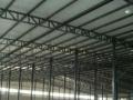 厂房 12000平米48尺 胶合板厂 寻求合作