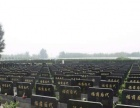 北京周边风水宝地、双人6800、免费接送、免费寄存