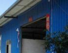 黄圃东福园 单一层钢构厂房2600平方招租