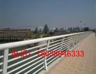 河南郑州不锈钢栏杆立柱桥梁河道护栏防撞安全护栏 商场景观护栏